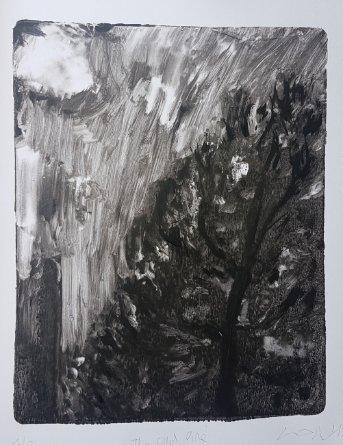 The Old Pines, 2019. £50
