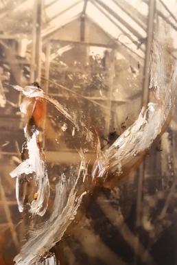 Untitled, photo & acrylic II