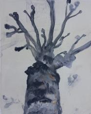 Stump 63