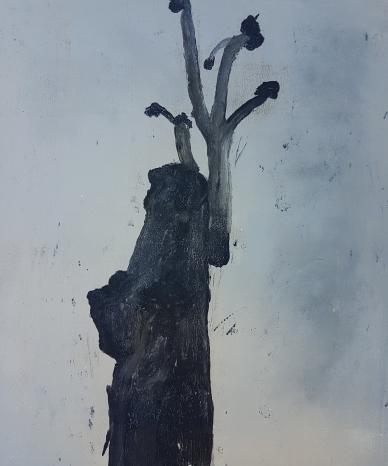 Stump 64