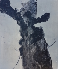 Stump 65
