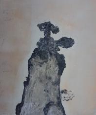 Stump 69