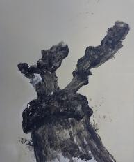 Stump 76