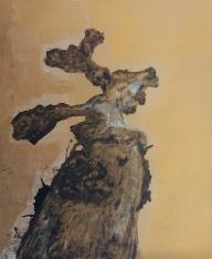 Stump 81