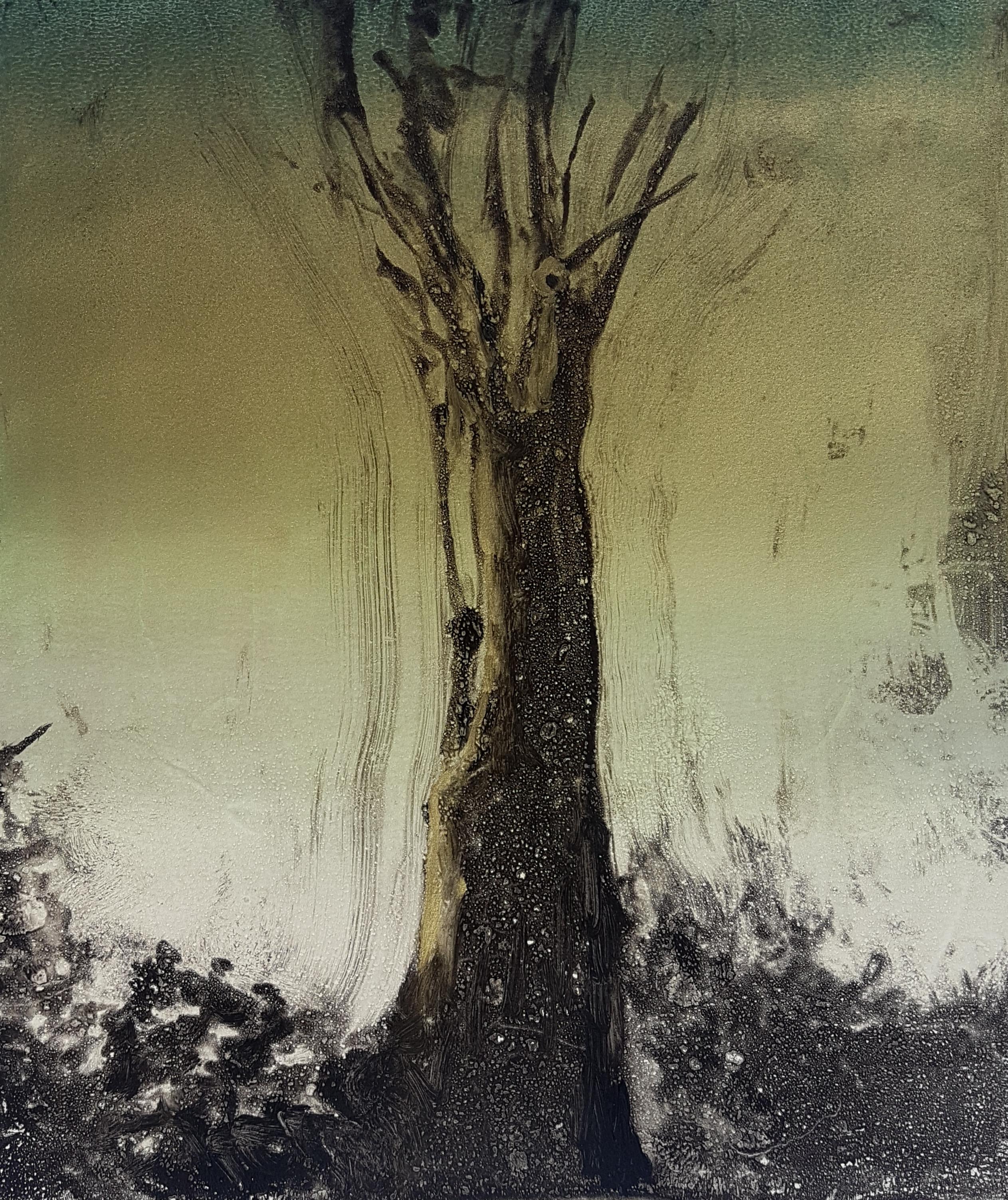 Monoprint, image 30x35cm, £75 UF